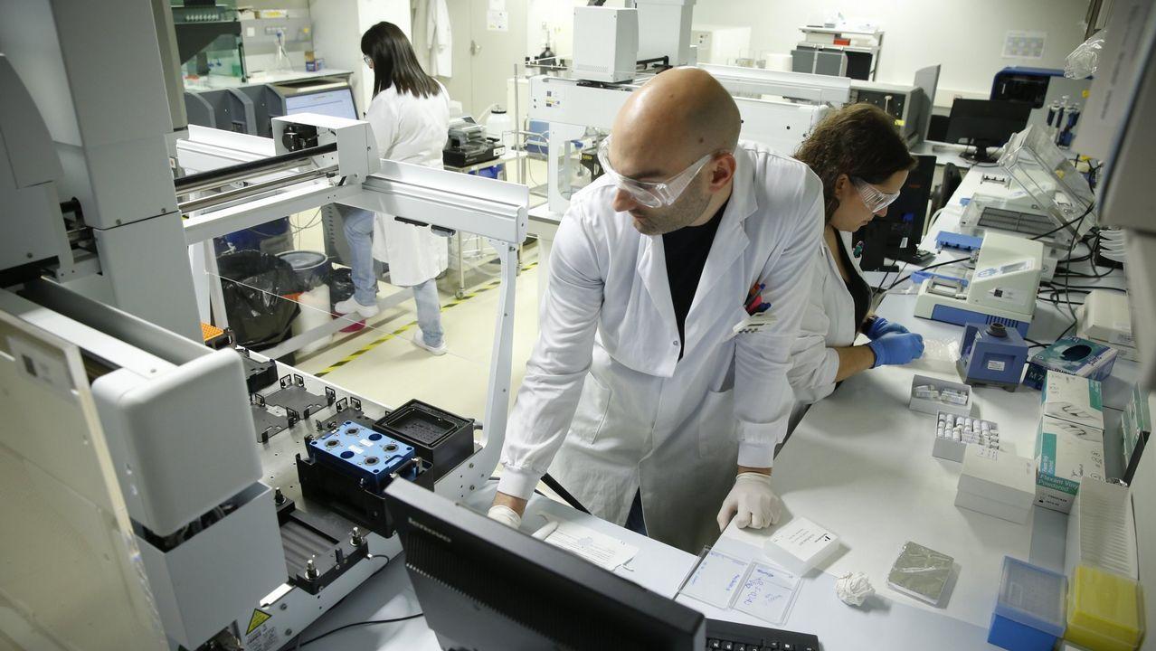 Javier Montenegro, del Ciqus de Santiago, es el responsable del desarrollo del proyecto
