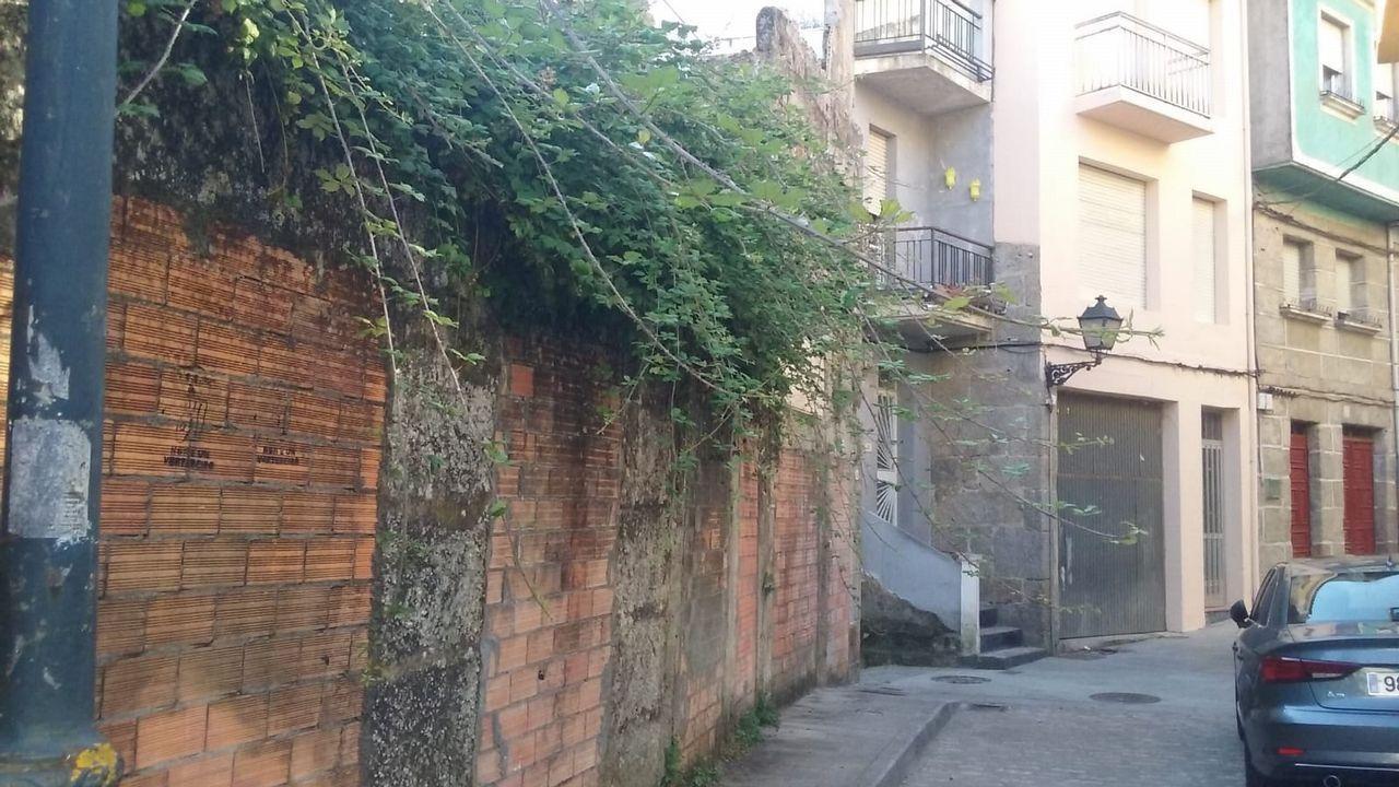 Granizada en Ourense.Asunción Rodríguez, de la bodega Crego e Monaguillo