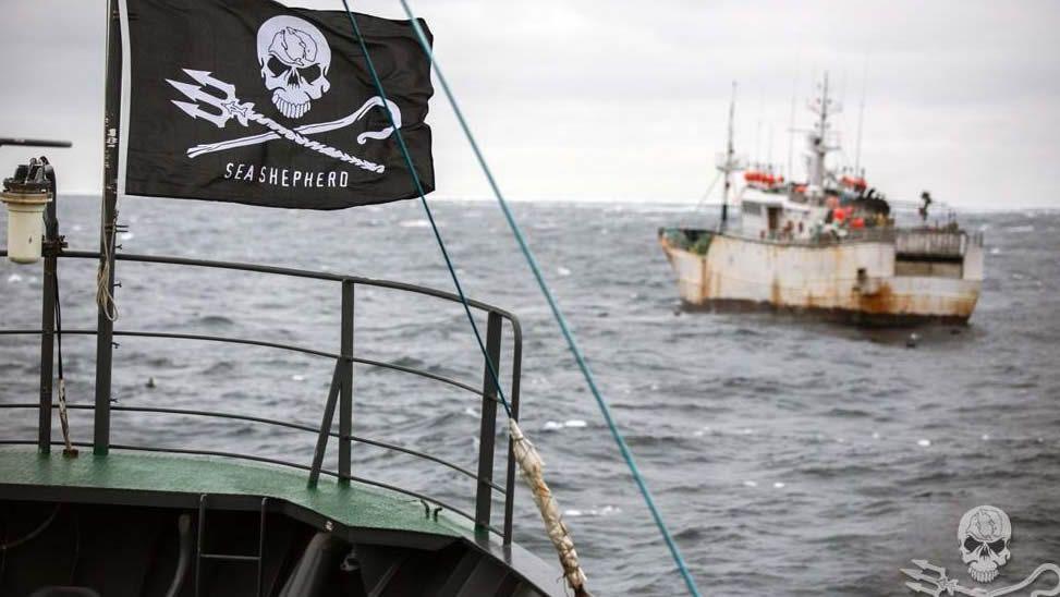 Comienzan las Xornadas de Folclore.Un barco ecologista persiguiendo en aguas tailandesas a un buque dedicado a la pesca ilegal de merluza
