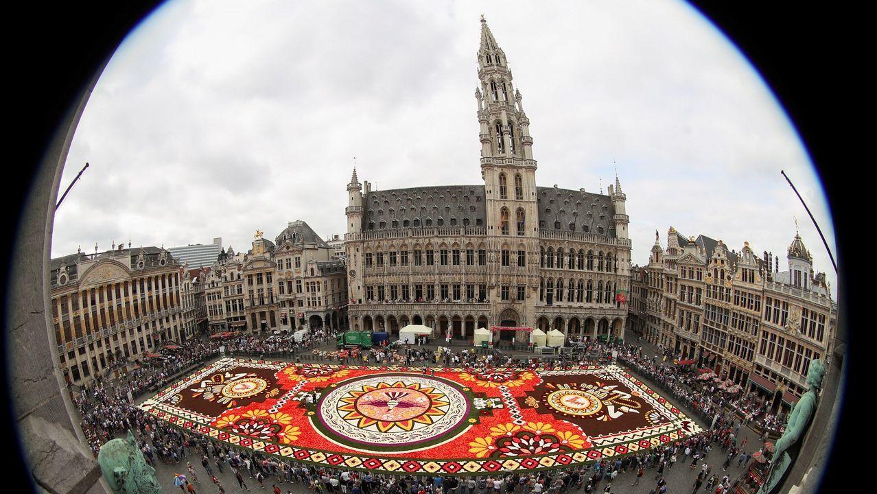 Fotografía tomada con un objetivo de ojo de pez que muestra la Grand Place en Bruselas adornada con una alfombra de flores, elaborada con cerca de 500.000 dalias y begonias