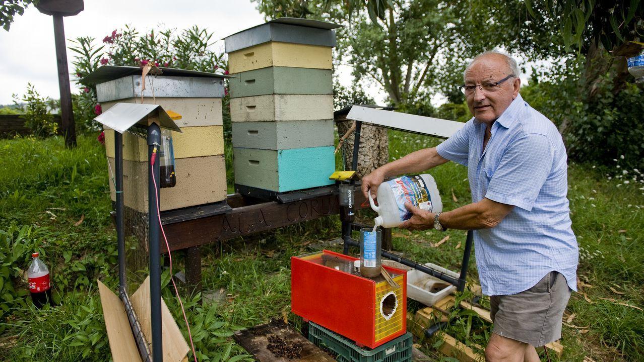 .Ramón Abades es el creador del apiario urbano del Jardín Botánico de O Burgo
