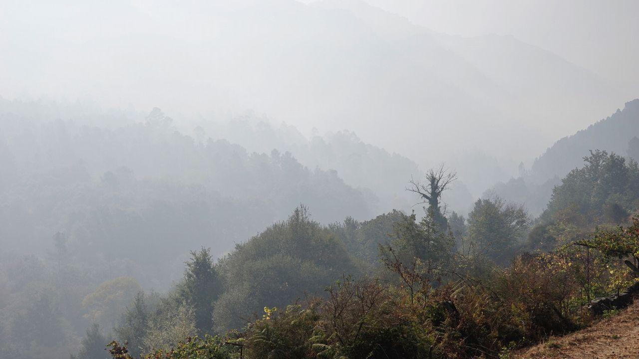El suelo gallego agrava los efectos de la sequía
