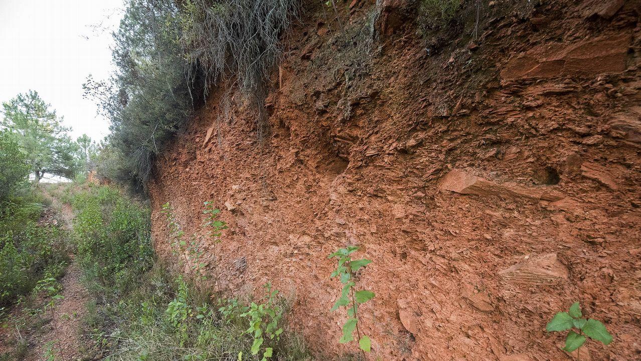 Otra vista de los cortes de terreno causados por la actividad extractiva en la mina de Piñeira