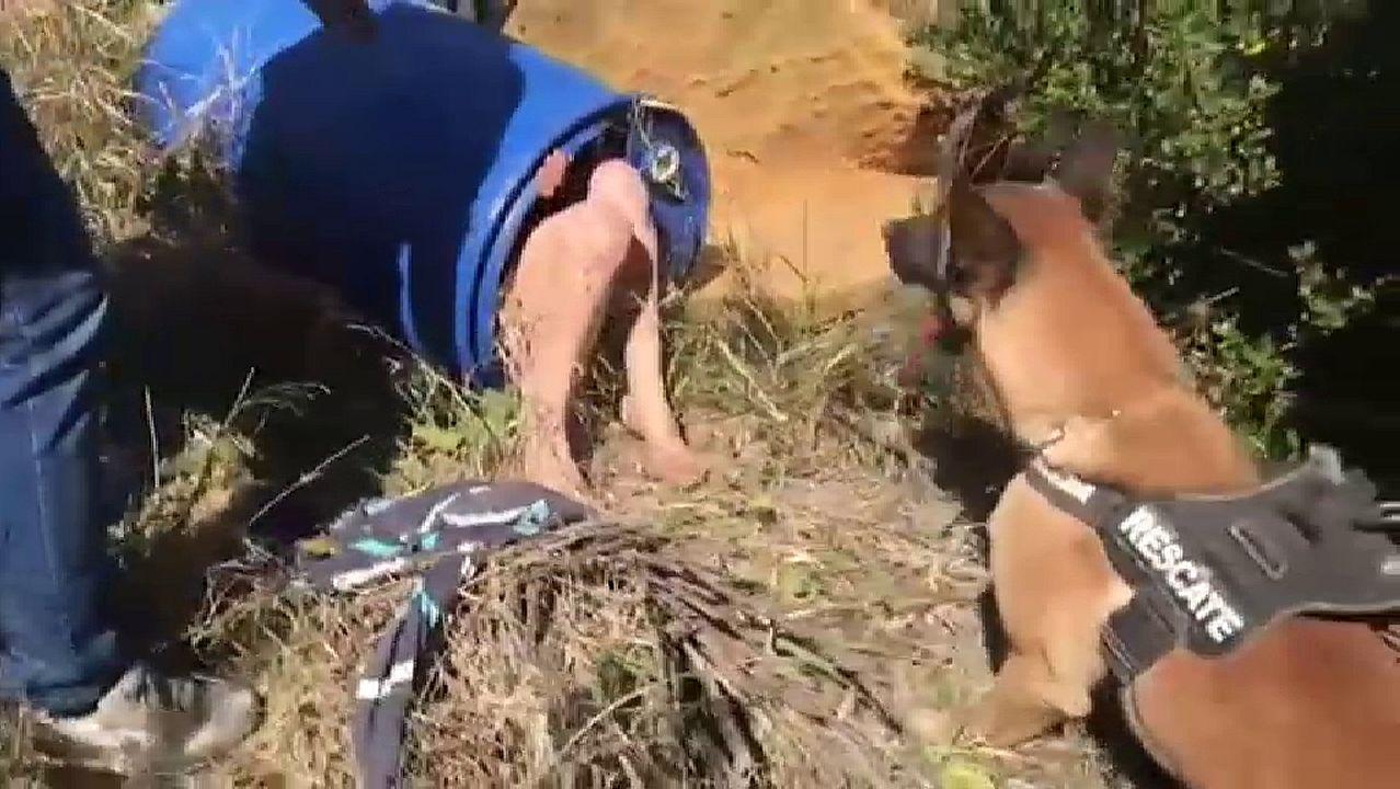 El impactante momento en que un perro encuentra en un bidón y semidesnuda a la presunta parricida de Godella.Marzo del 2019: en esta imagen, tomada hace unos diez días, el tablero derecho estaba a punto de llegar al estribo. Se completará este mes.