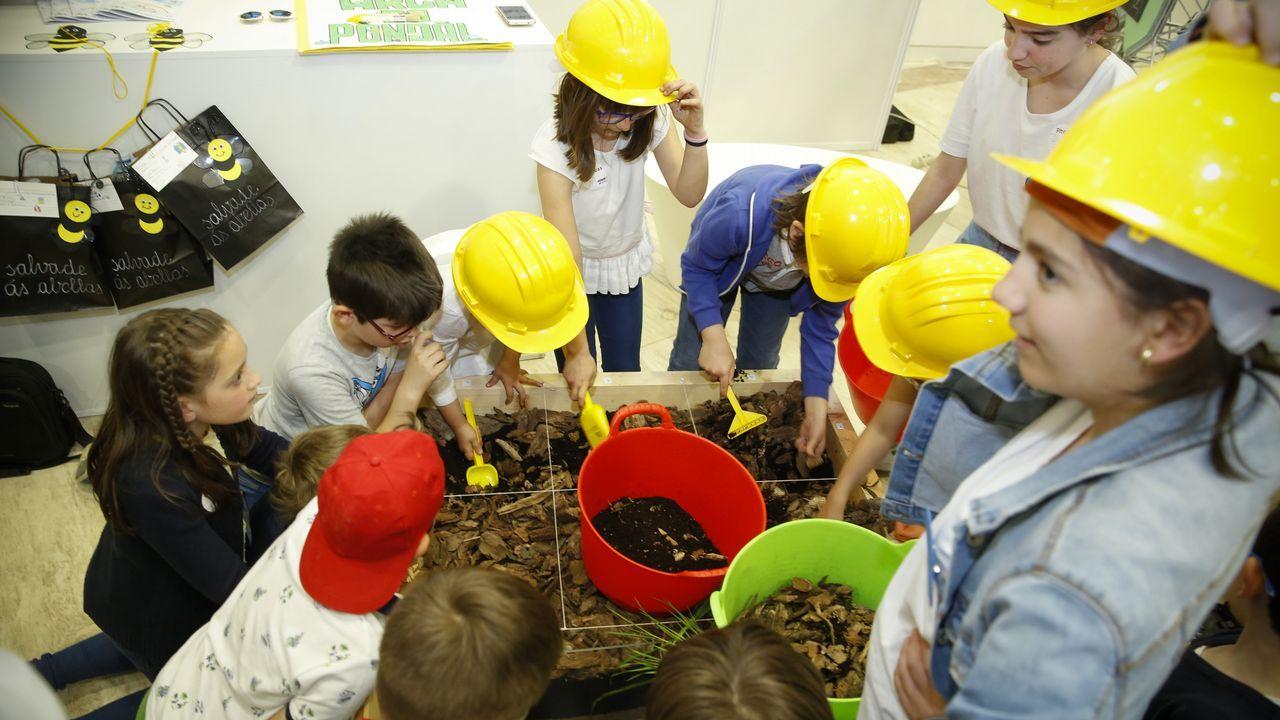 .Los alumnos del CPR Eduardo Pondal (Cangas) tenían un proyecto que incluía un «yacimiento»