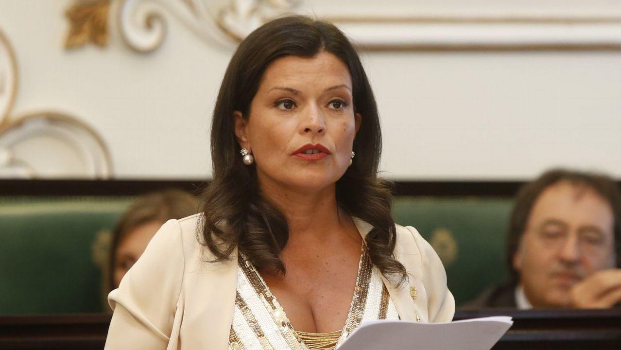 Deslumbrados por las luces.Elena González, a la izquierda, durante una intervención del portavoz de Marea de Vigo