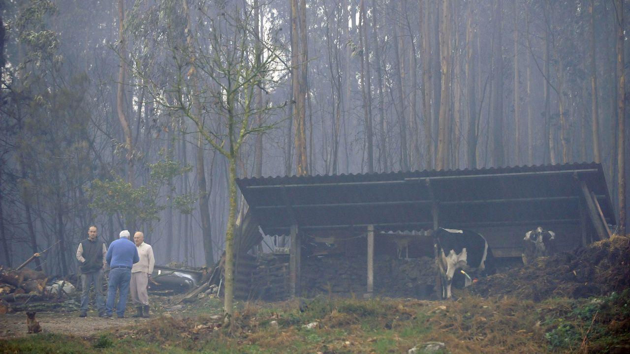 Incendio en Silleda, en la parroquia de Siador