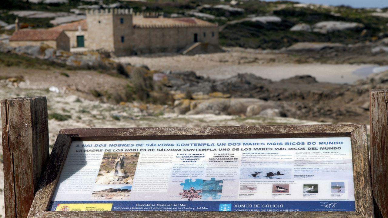 Una alameda histórica.Santa Cristina de Lena