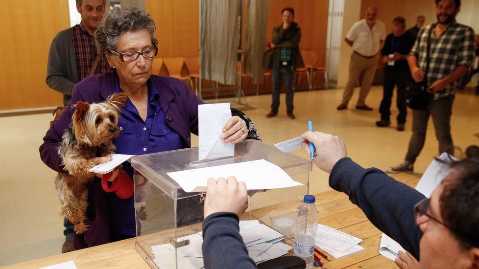 Jornada electoral en Galicia.Los votantes del no tomaron las calles de las principales ciudades de Colombia para festejar la victoria en el plebisticio.