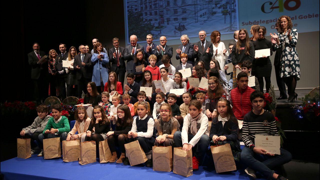 Ourense celebra la Constitución.Las ayudas son para plantación de viñedo