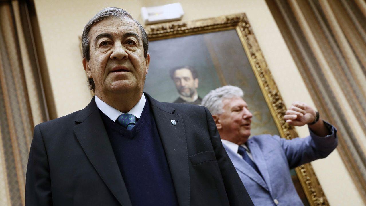 | EFE.El ex secretario general del PP Francisco Álvarez Cascos, durante su comparecencia ante la Comisión de Investigación sobre la supuesta financiación ilegal del PP.
