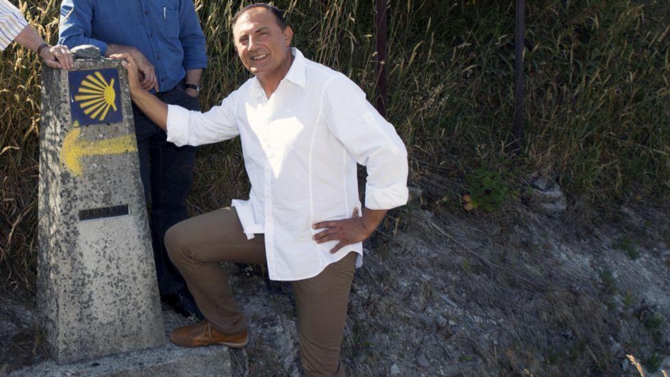 Daños en cultivos de Castroverde por una piara de «porcoriles»