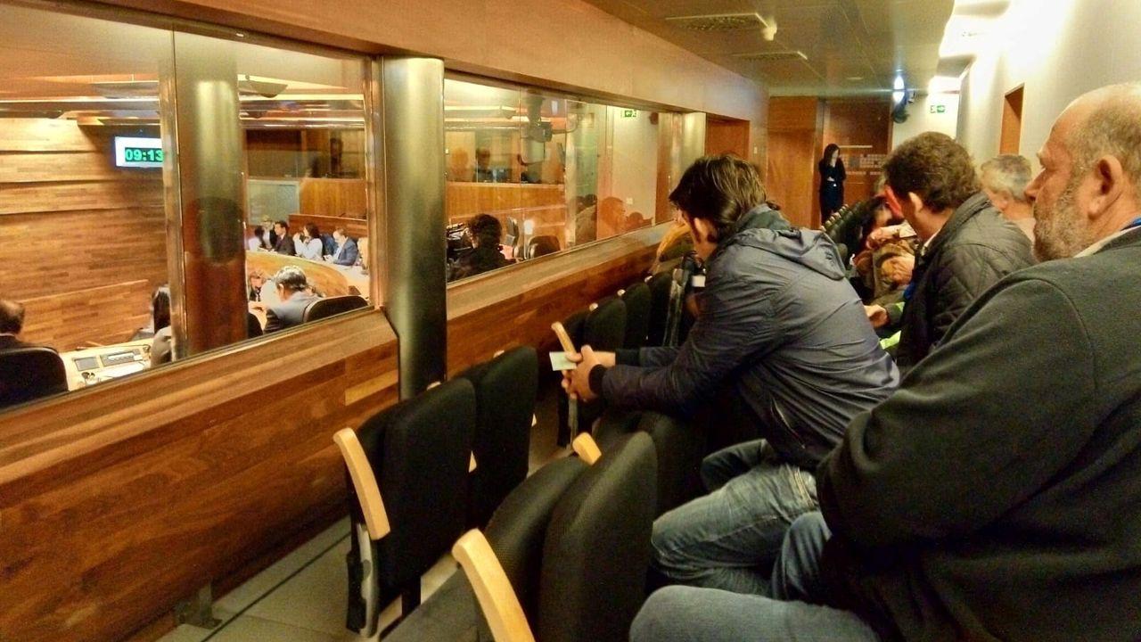 Ganaderos asturianos siguiendo la votación