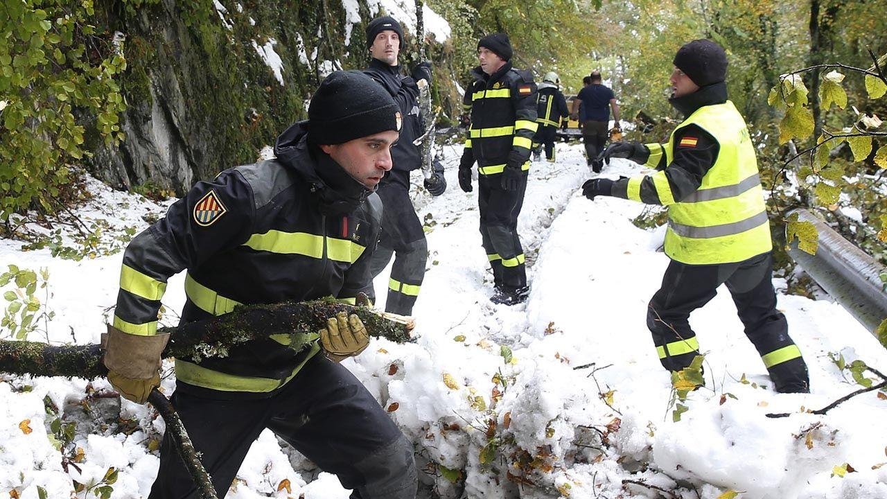 Perros enjaulados.La UME trabajando despejando el camino de nieve y árboles