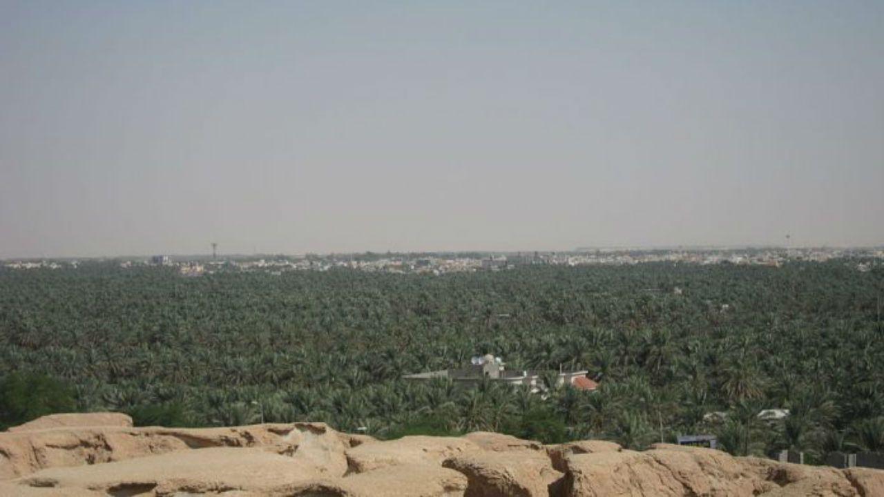 Al-Hasa