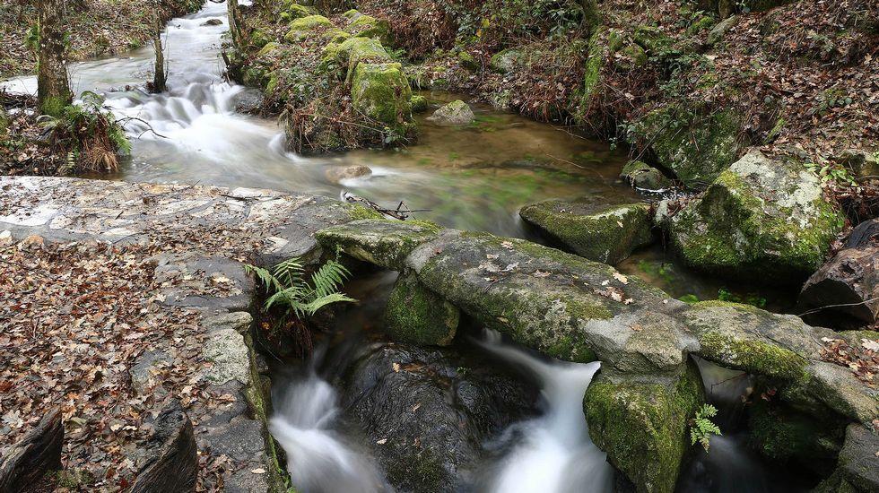 Pequeños puentes de piedra cruzan el arroyo en varios puntos