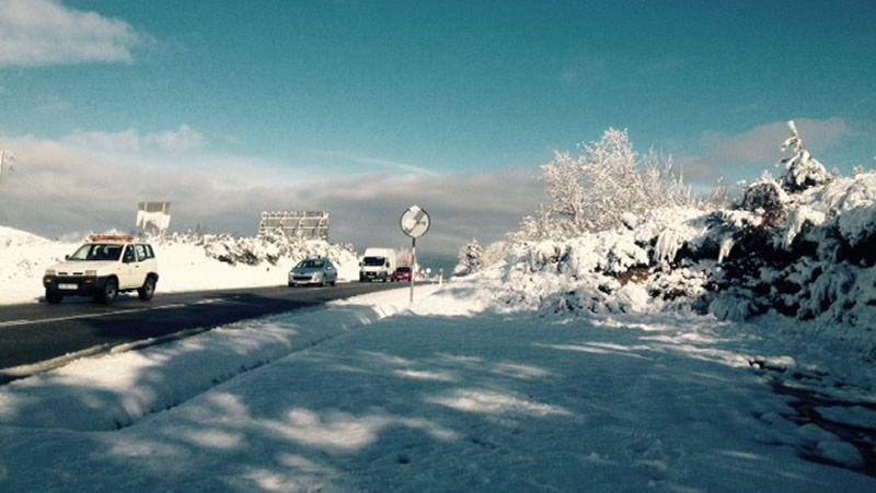 Todas las imágenes de las nevadas en Galicia.Uno de los ejemplares fotografiados por Andoni Canela y publicado en su libro Durmiendo con lobos.