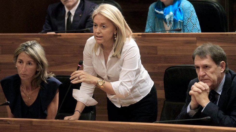 Felipe VI inicia, con Patxi López, una nueva ronda de consultas.La presidenta de Foro, Cristina Coto, en un momento de la sesión parlamentaria