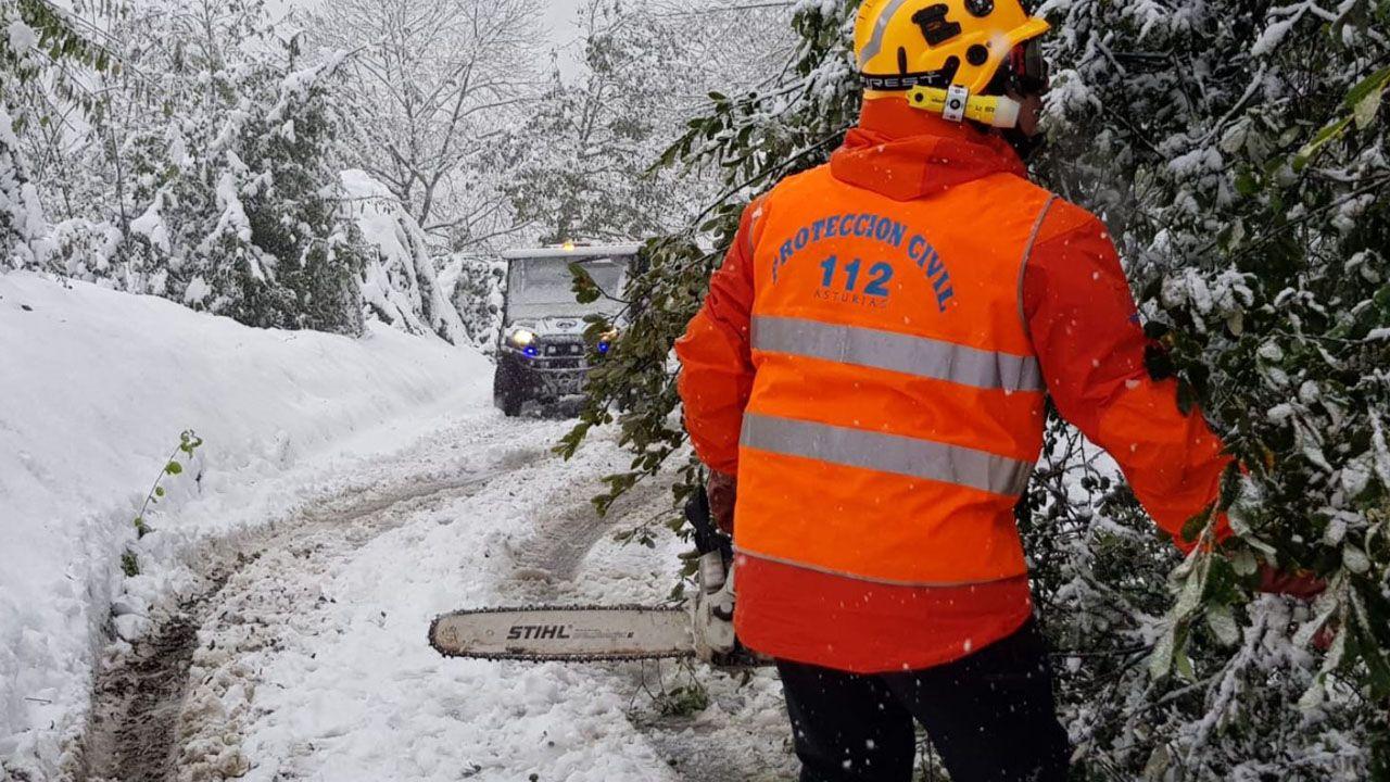 Los voluntarios de Pola de Lena y el 112 ayudando a retirar los árboles caídos por la nevada