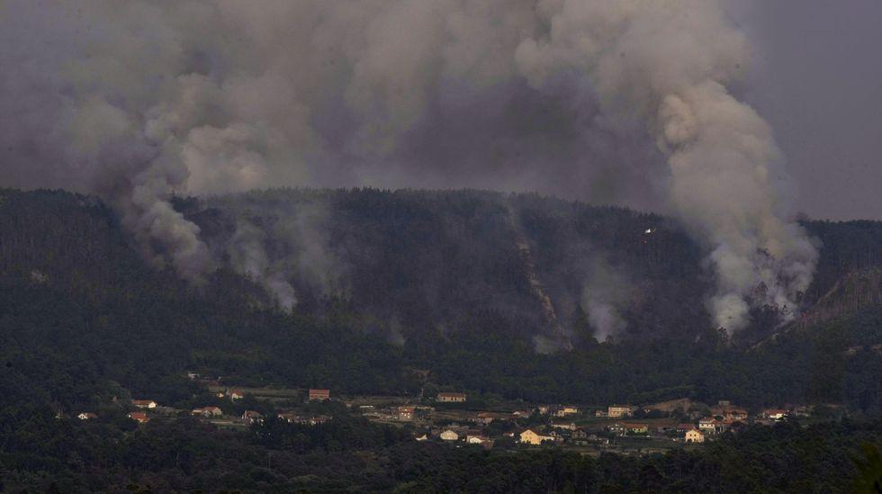 Un manto negro y gris tras las llamas.Incendio forestal en Coaxe