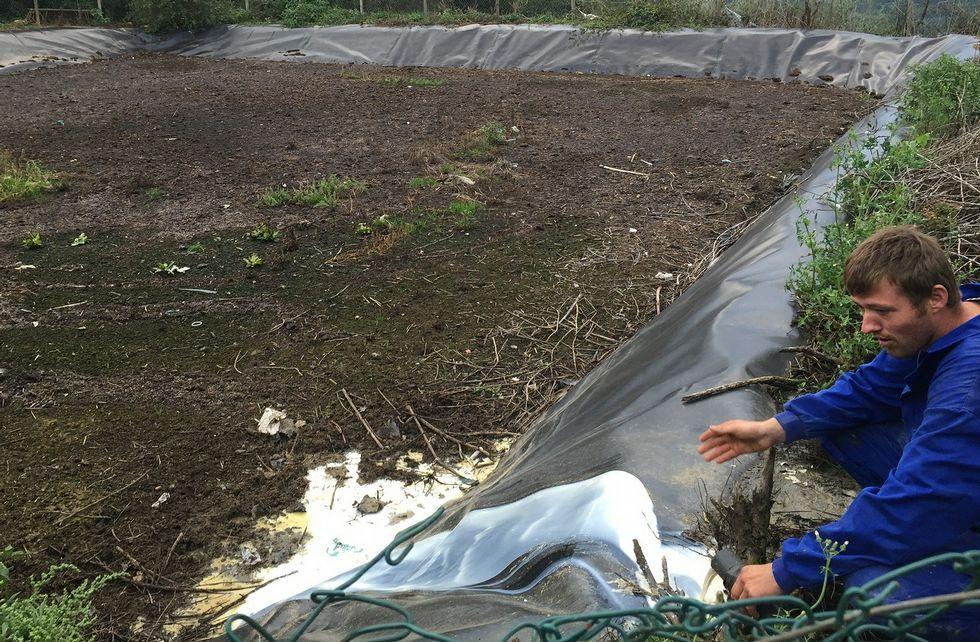 .Una granja de Toques vierte a una fosa séptica cerca de 3.000 litros de leche cada día.