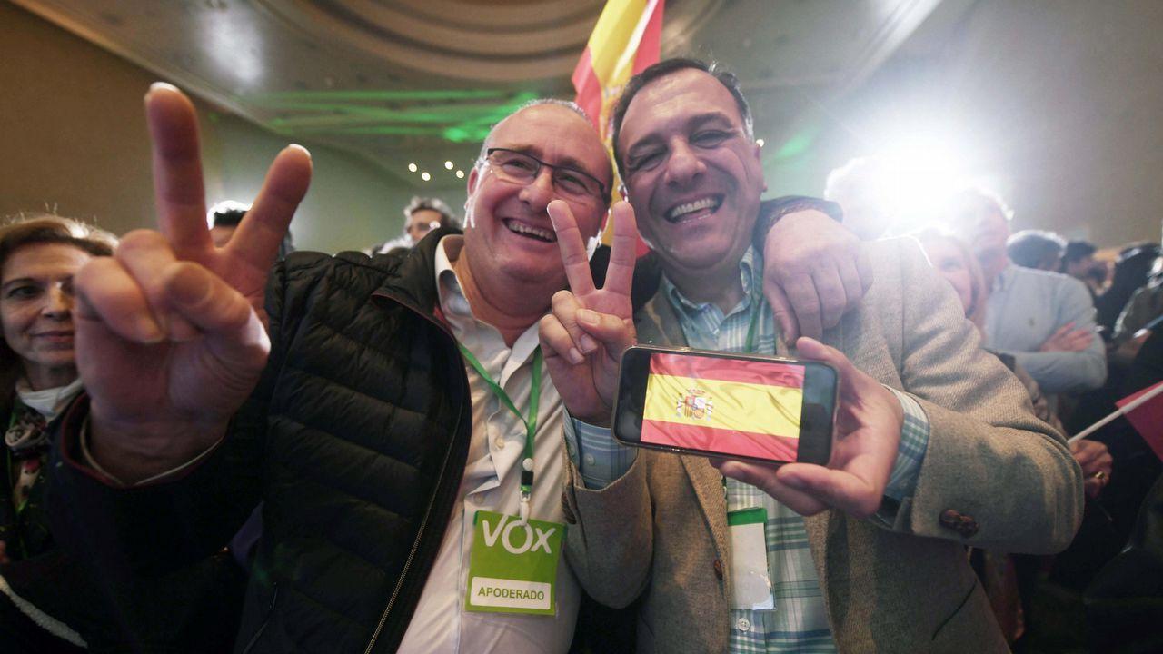 El programa de Vox que ha votado un 11% de los andaluces.Javier Fernández Lanero