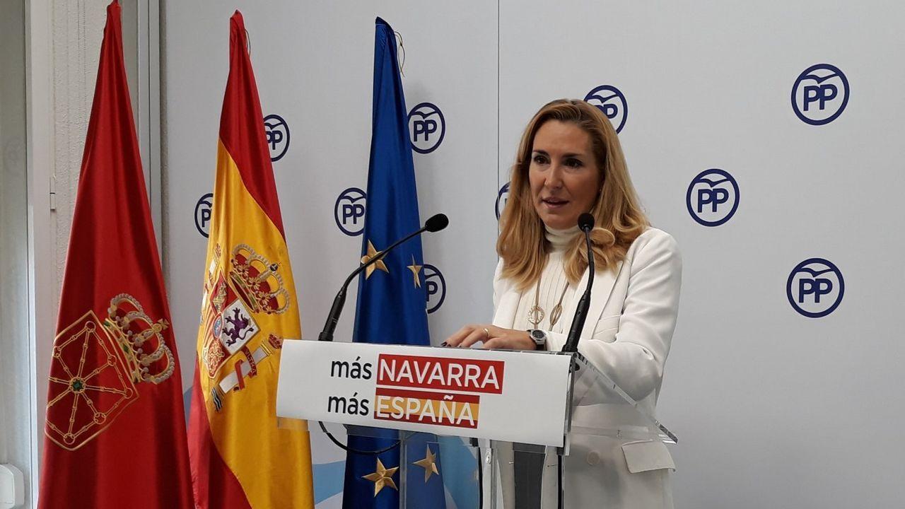 candidatos.Ana Beltrán Navarra. Los populares navarros son pocos, pero en el Congreso apostaron por el mensaje centralista de Pablo Casado.