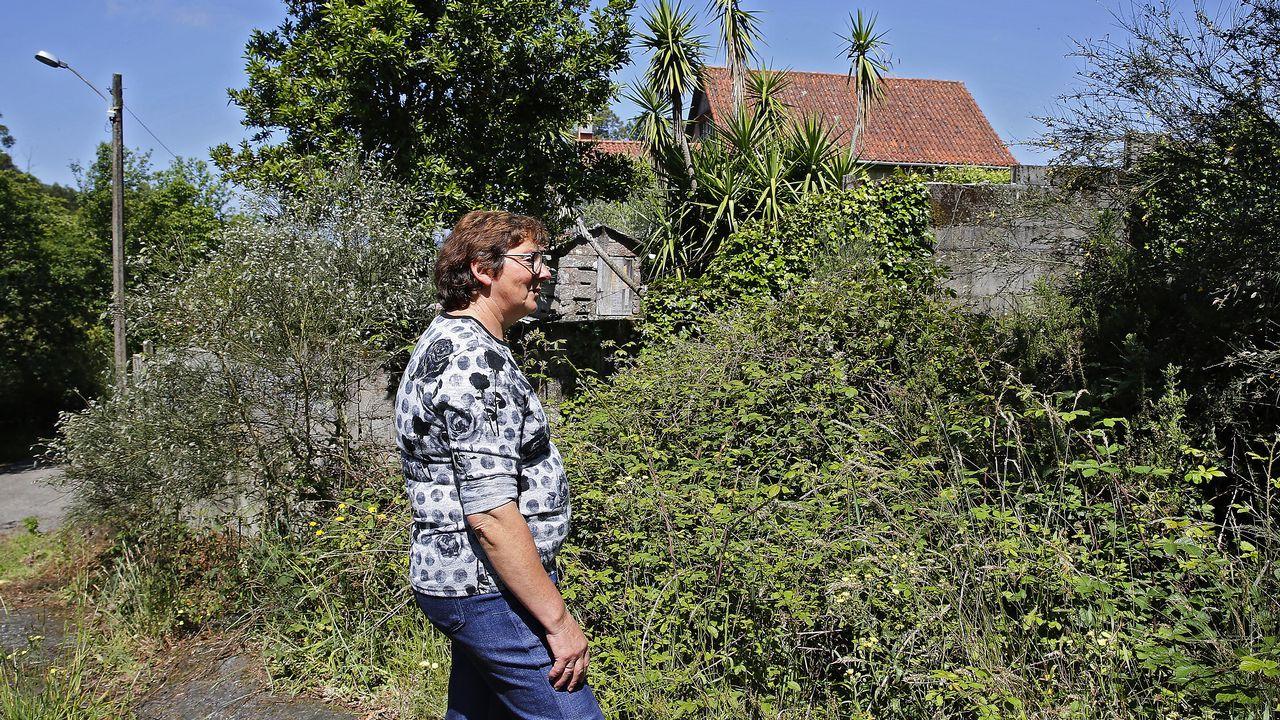 Rebordelo. María, una vecina de esta parroquia de Ponte Caldelas, ha decidido limpiar su finca y el camino vecinal por el temor a que la foresta que circunda su vivienda se convierta en un problema en caso de incendio