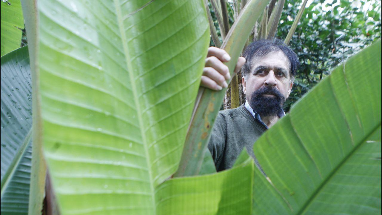 Incidente con un gallego en un partido de los Miami Heat.Rivera Arnoso, ayer en su parque botánico, en el que tiene 2.400 árboles