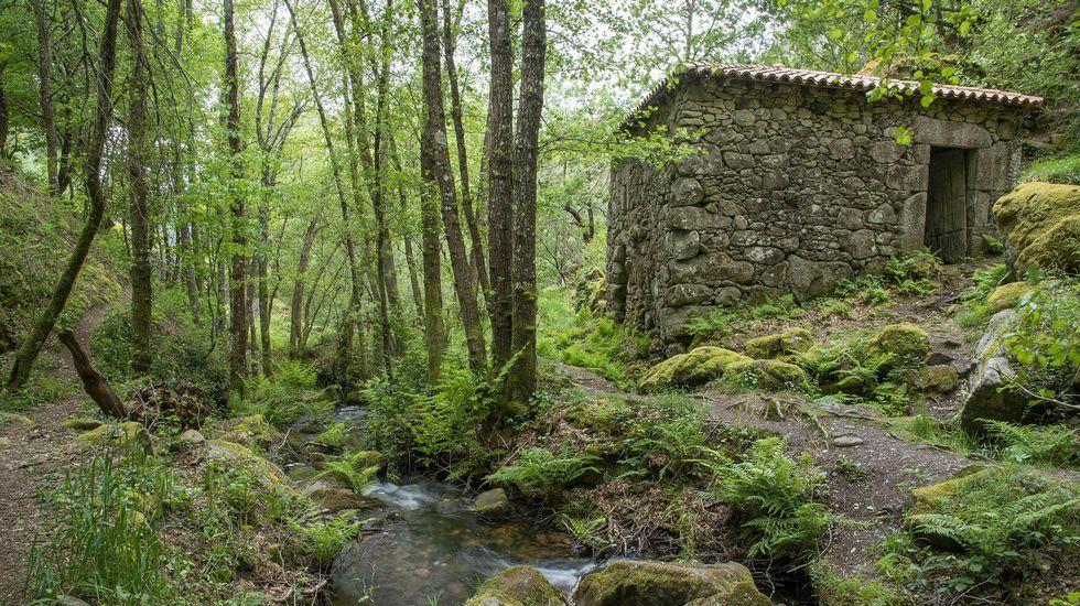 Molino de Roque de Arroxó
