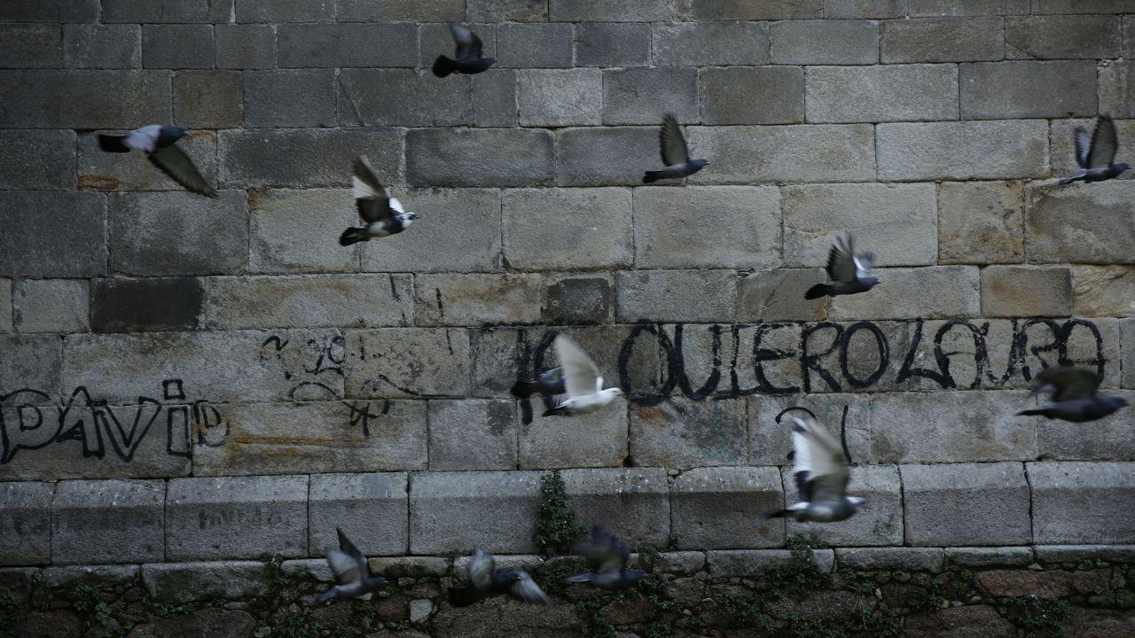 Una amenaza contra el patrimonio.El fiscal de Medio Ambiente de Galicia en su despacho de Santiago