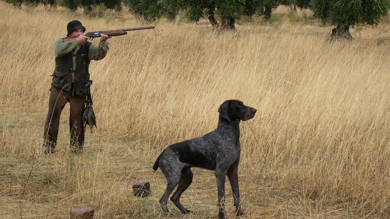 Un cazador apunta con su rifle