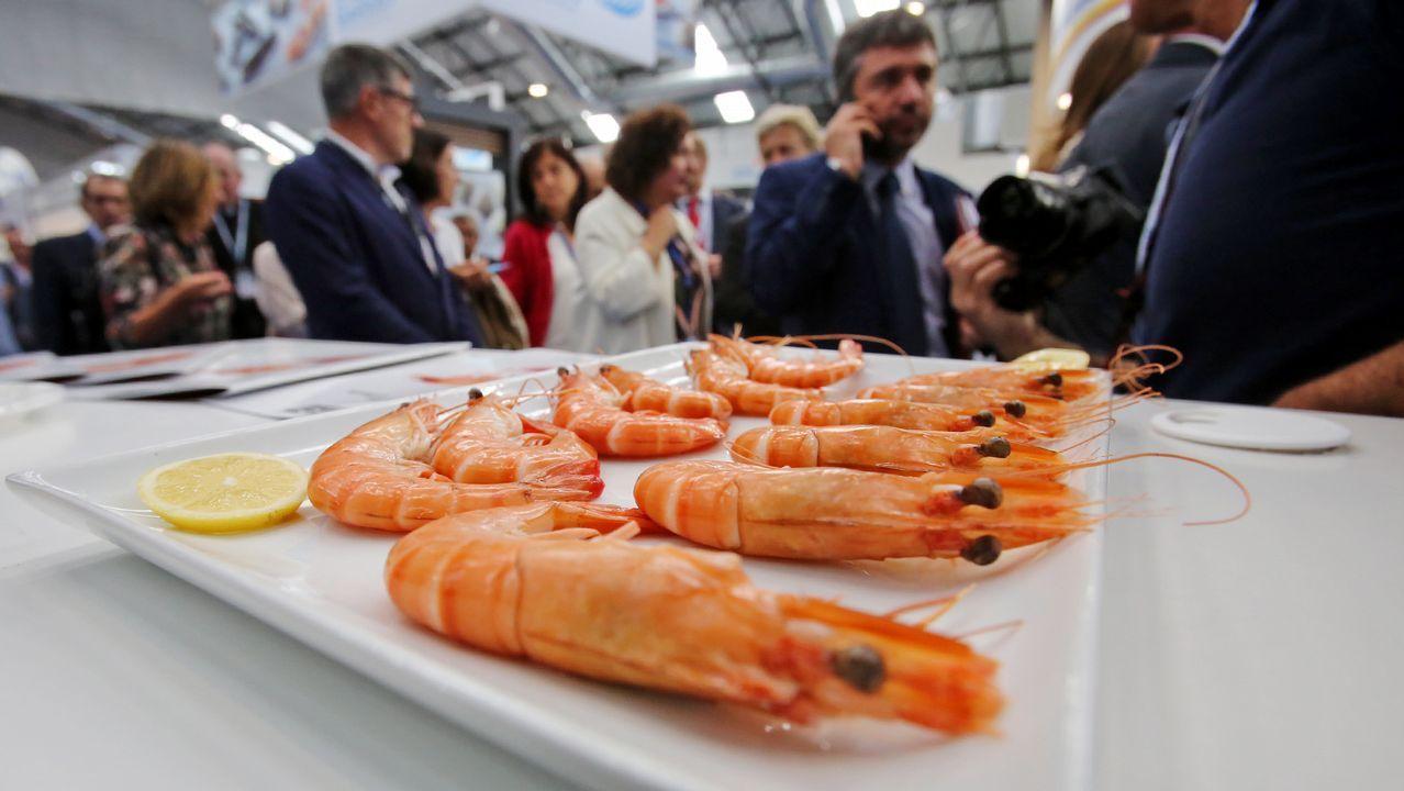 La cumbre mundial del congelado se reúne en Vigo.Naves de Iberconsa en la zona portuaria de Vigo