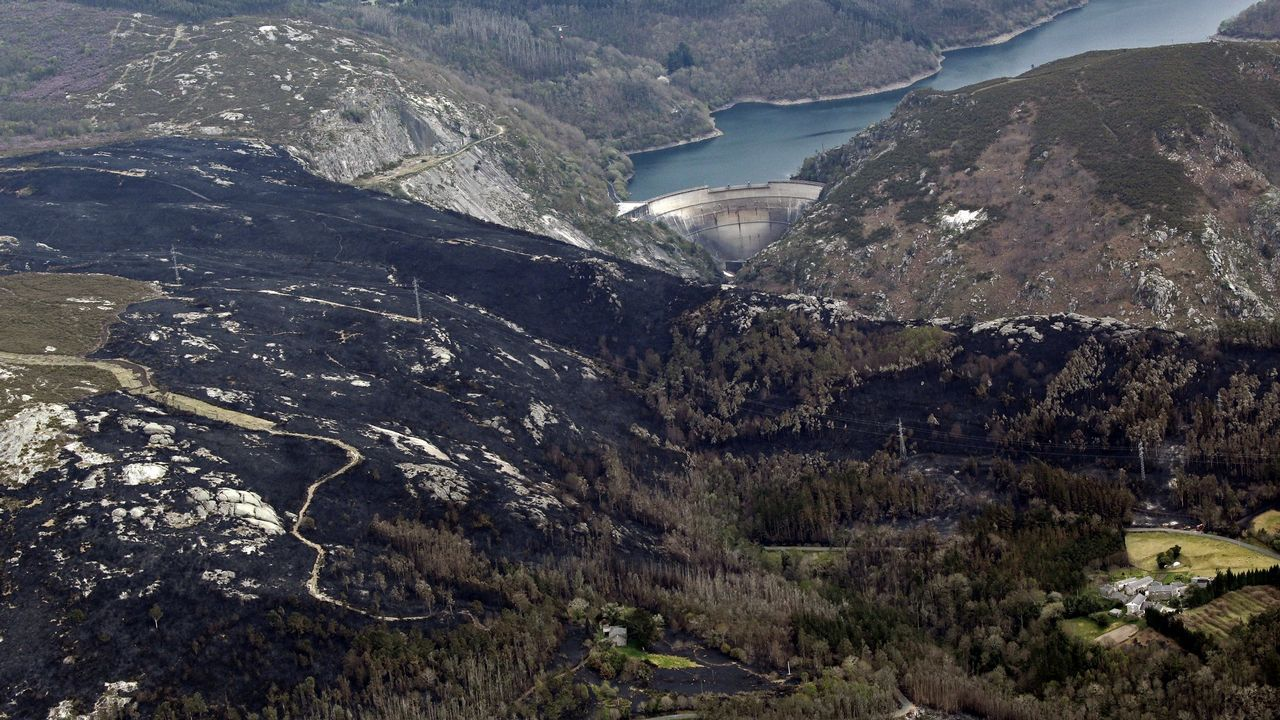 La ría de Aviés, escenario de un encuentro multitudinario de aves migratorias.Vista aérea del incendio forestal que asoló el Parque Natural de las Fragas do Eume en el año 2012