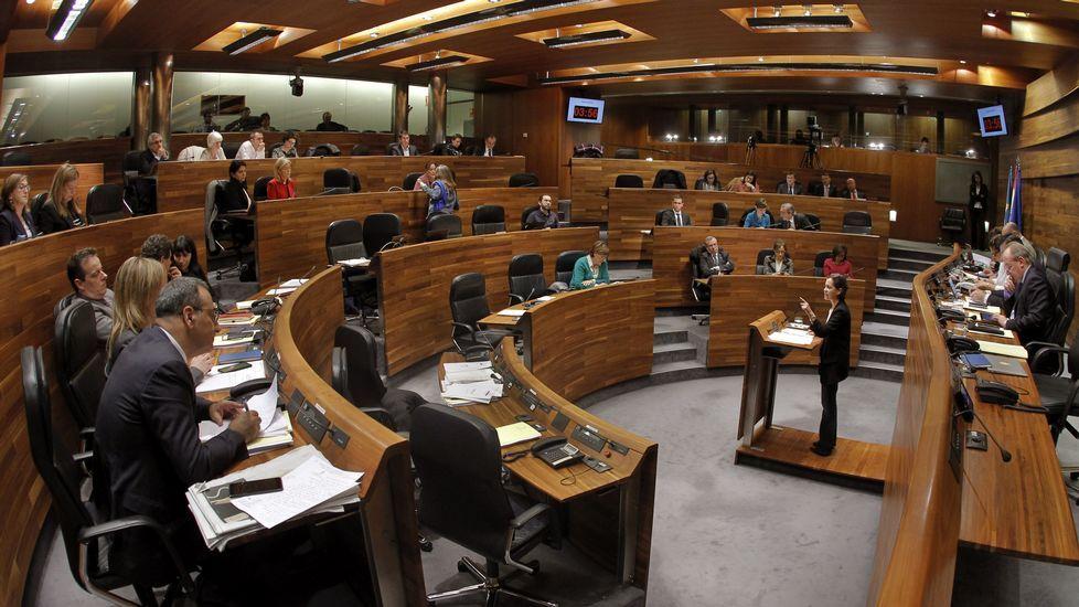 Obras en la variante de Pajares.La presidenta de Foro, Cristina Coto, en un momento de la sesión parlamentaria