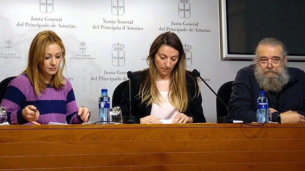 La secretaria de movimientos sociales de IU, Mayka Barros; la diputada de Podemos Lucía Montejo y al representante del Movimiento en Defensa de la Enseñanza Pública, Luis Fernández.La secretaria de movimientos sociales de IU, Mayka Barros; la diputada de Podemos Lucía Montejo y al representante del Movimiento en Defensa de la Enseñanza Pública, Luis Fernández