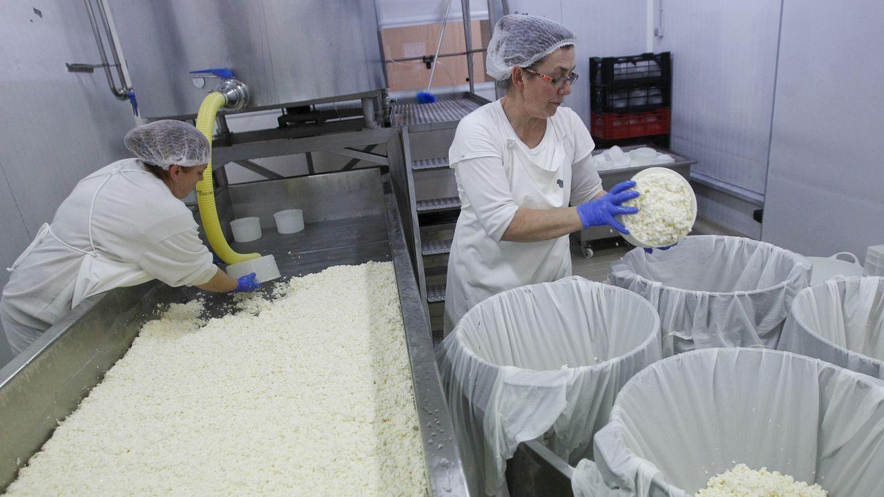 La fábrica de los quesos de oro.Alexandre Carrodeguas, Jorge Suárez y Carlos del Río