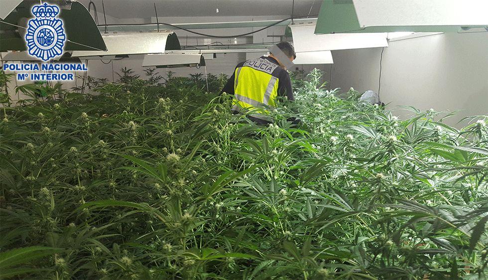 Cerca de un centenar de arrestos en una operación policial contra el narcotráfico.La Oreja de Van Gogh actuando en María Pita en 2012