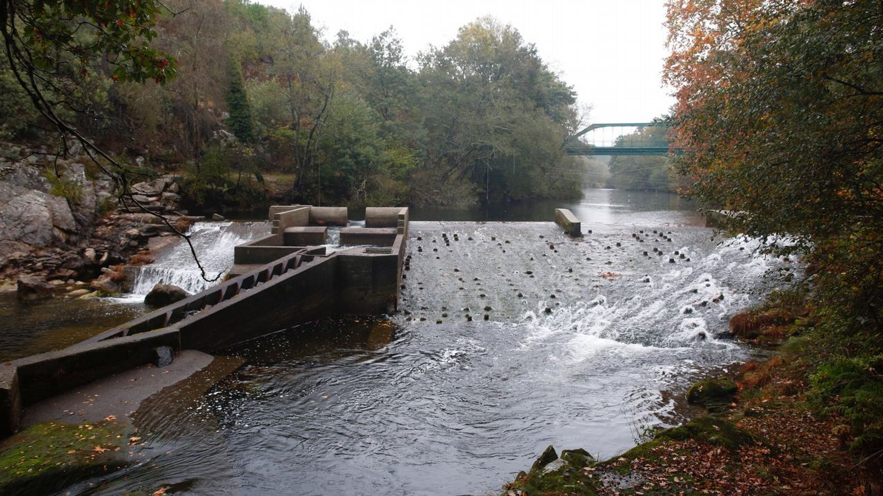 El Lérez es una de las cuencas donde la Xunta ha rebajado el nivel de prealerta