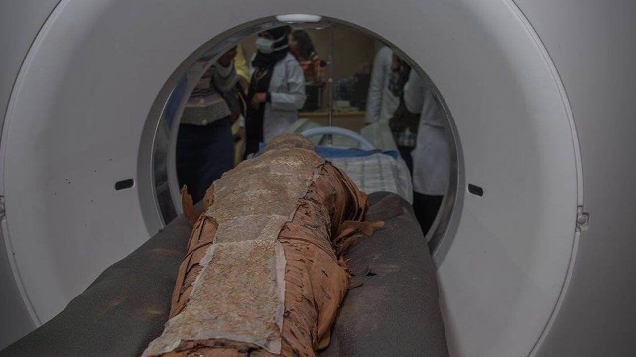 La astrofísica gallega que reina en la NASA.La autopsia al calamar gigante fue realizada en Luarca (Asturias), donde se encuentra el animal, por un equipo del IIM de Vigo y por miembros del Cepesma