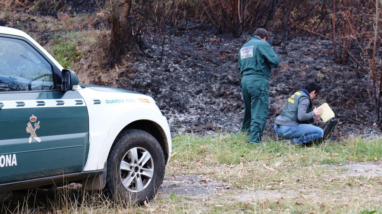 Guardia civil, incendios, incendio, fuego.Dos guardias civiles recogen pruebas de un incendio