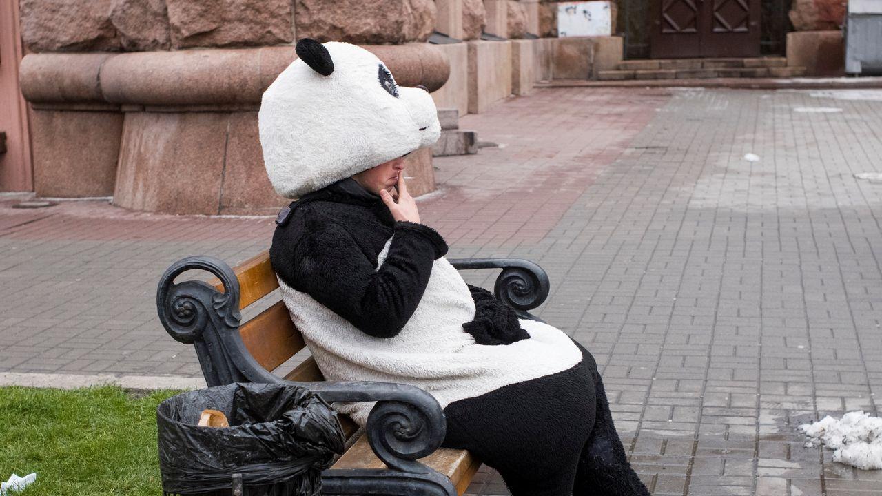Hasta los «osos pandas» se echan el pitillo