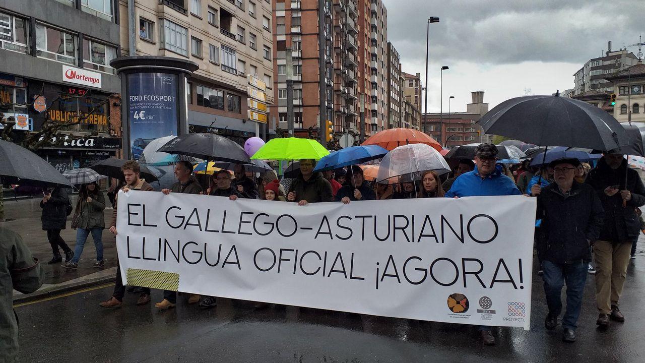 La manifestación por la oficilidad en imágenes.Adrián Barbón