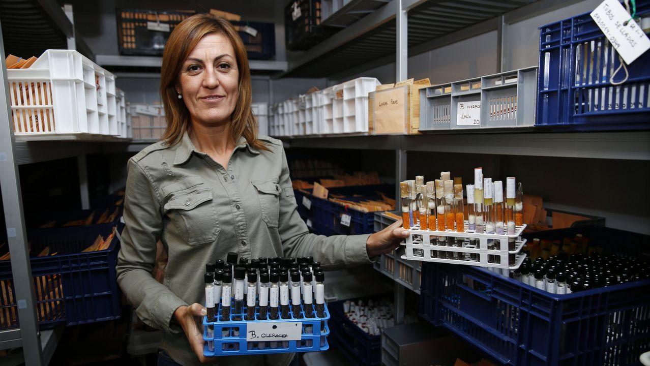 El arca gallega del siglo XXI.La científica asturiana Rosa Menéndez