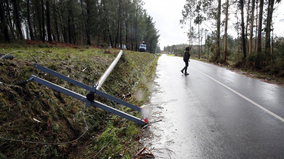 Postes del tendido eléctrico seguían el martes por el suelo en Trazo