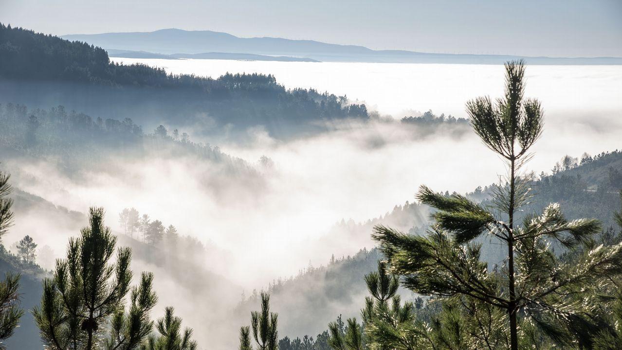 El valle de Lemos cubierto de niebla, visto desde el Alto do Coto, a unos 600 metros sobre el nivel del mar