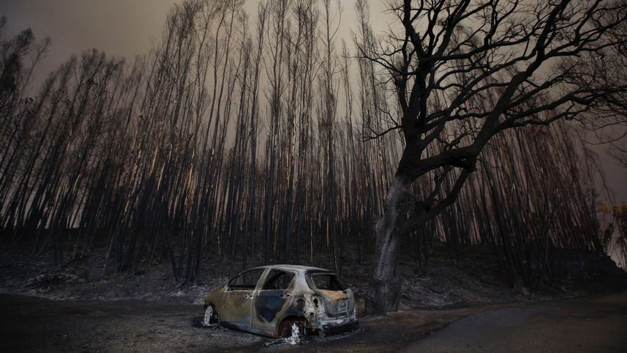 Galiza, incendios: La Xunta admite que en As Fragas do Eume han ardido 750 hectáreas.  I18j7062