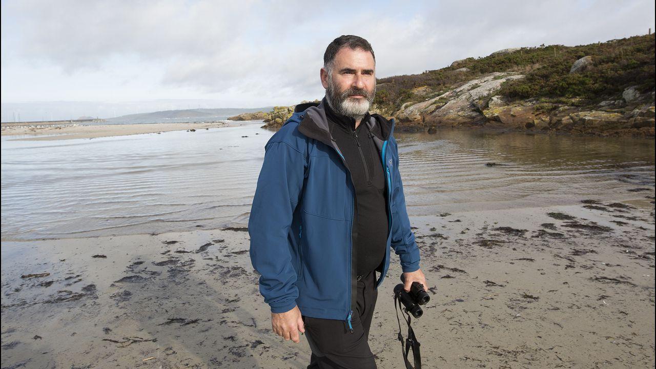 Un detenido en Galicia en una operación contra la pornografía infantil.Olas en la playa de San Lorenzo de Gijón