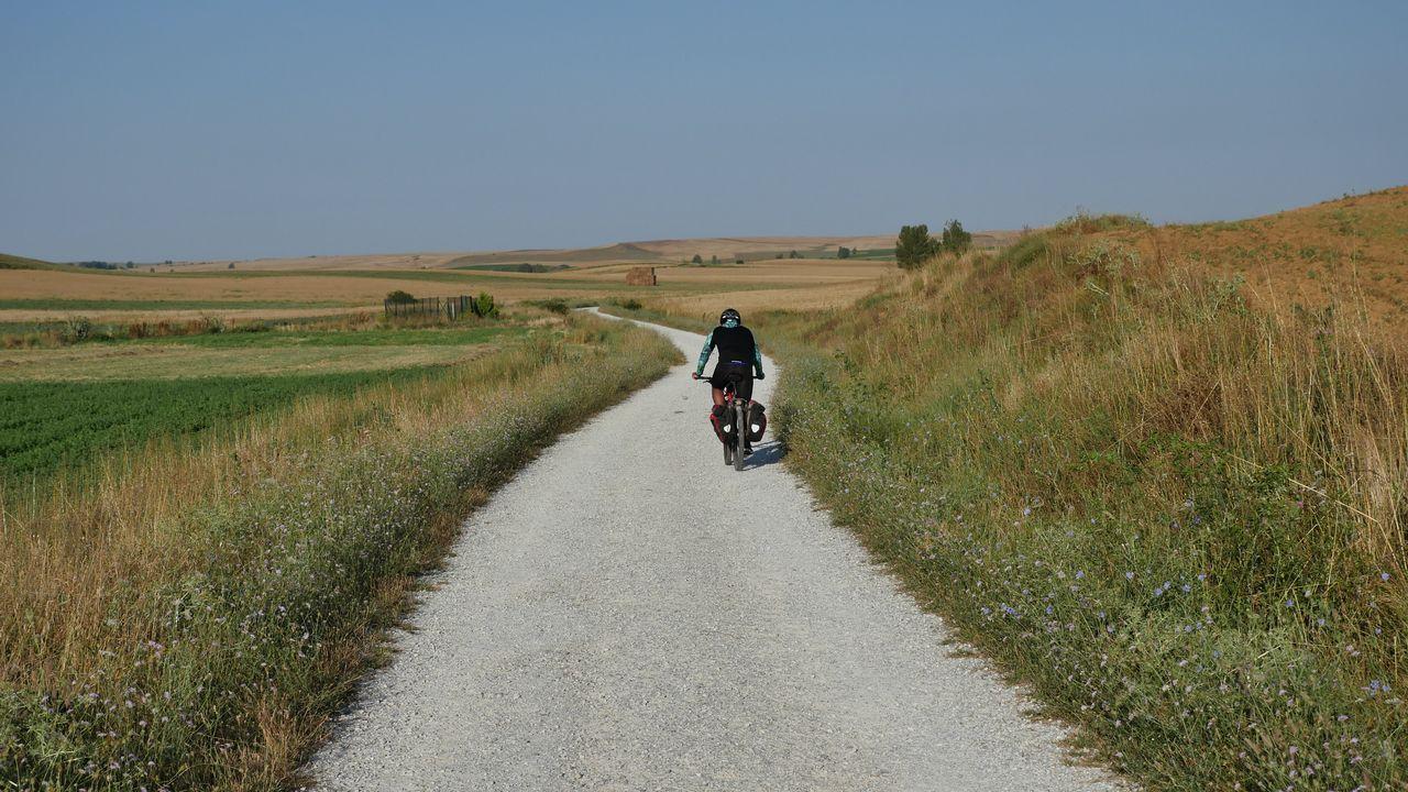 Ya tenemos media Compostela.La etapa 9 sale de Terradillos de los Templarios y transcurre durante 45,9 kilómetros hasta Mansilla de las Mulas