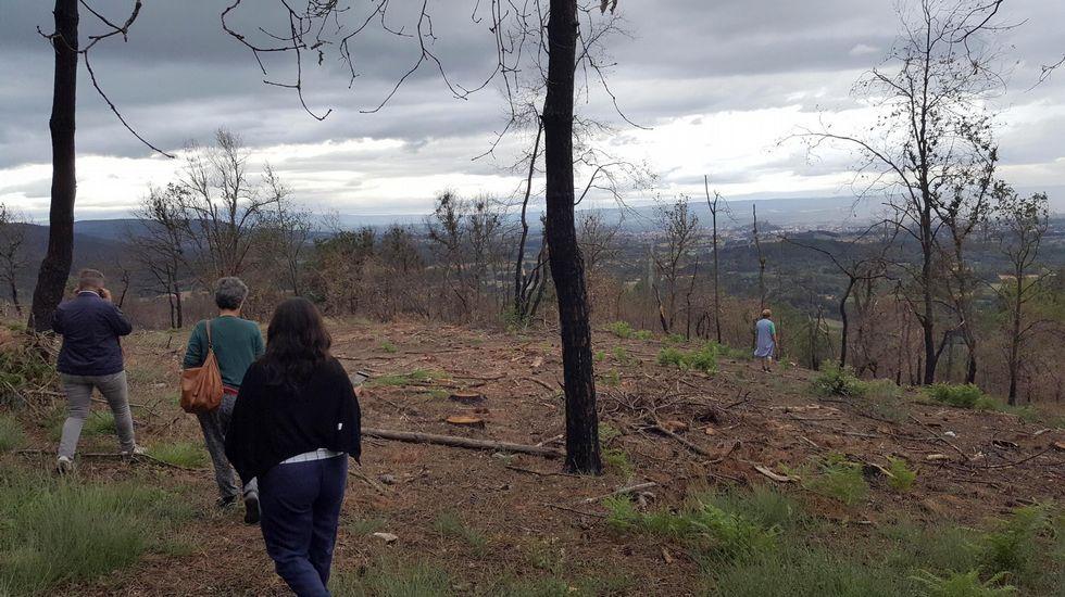 Un paseo en imágenes por Cortes y sus alrededores.En esta ortofotografía se indica la situación de la mina del Burato do Lobo —señalada con el número 3— y de otras dos antiguas explotaciones ubicadas en su entorno inmediato